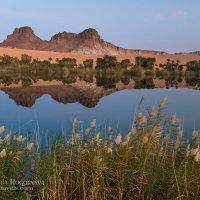 Соленое Озеро Унианга :: Victoria Rogotneva