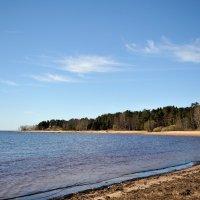 на Финском заливе... #4 :: Андрей Вестмит