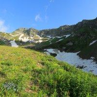 В горах Кавказа :: ninell nikitina