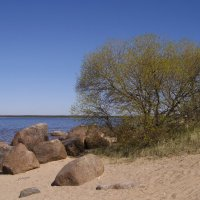 Берег озера :: lady v.ekaterina