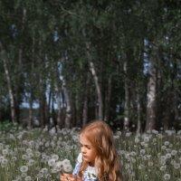 Одуванчиковое детство :: kurtxelia
