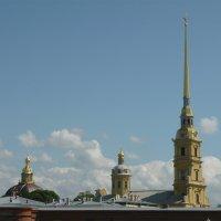 Петропавловский собор :: Вероника