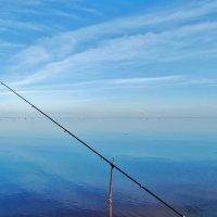 Финский залив. :: Евгений Яхим