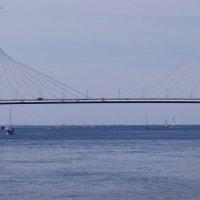Про мост и море... :: tipchik