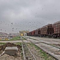 железная дорога :: олег
