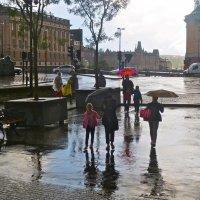 Летний дождь в Стокгольме :: Елена