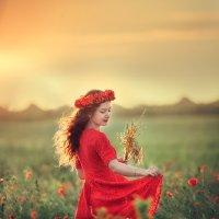 Красные маки :: Татьяна Бурыкина
