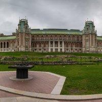 Большой Царицынский дворец :: Владимир Брагилевский