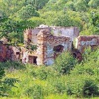 Руины оборонительного укрепления :: Галина Каюмова