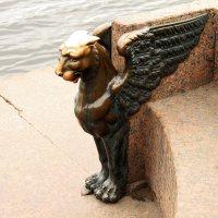 Грифон на набережной Невы :: sav-al-v Савченко