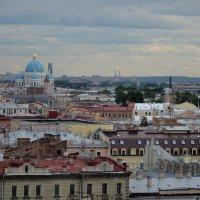 Вид с Исаакиевского собора :: Ольга Соловьева