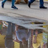 Отражение и реальность :: Татьяна Золотых