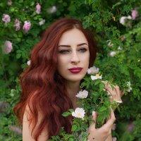 В объятиях роз... :: Юлия Тягушова