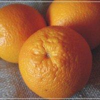 Апельсины. :: Владимир Бочкарёв