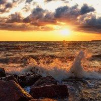 Питерские закаты на Финском заливе :: Владимир Колесников