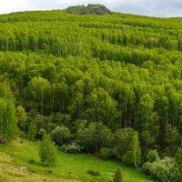 Башкортостан :: Екатерина Агаркова
