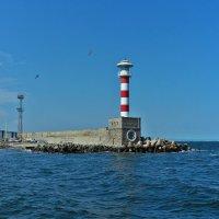 Бургасский маяк :: Swetlana V
