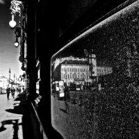 мраморное отражение :: Елена