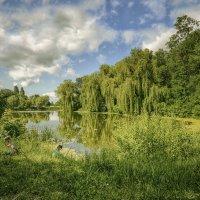 Рыбалка на озере в Графском парке :: Александр Бойко