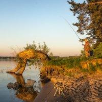 Рыбак :: Наталия Горюнова