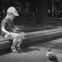 Голуби :: Алексей Леухин