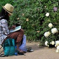 Художники, как и фотографы торопятся запечатлеть цветение :: Татьяна Помогалова