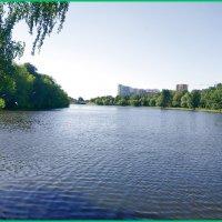 Люблинский пруд в столице... :: Николай Дони