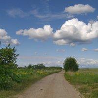 Сельский пейзаж :: lady v.ekaterina