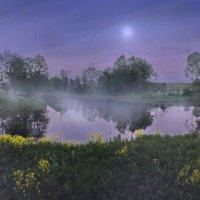 Холодный туман :: Лара Симонова