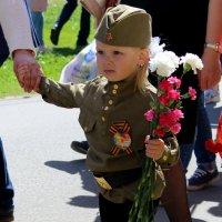 День победы! :: Екатерина Кучко