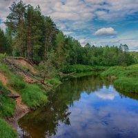 Тихое течение небольшой реки... :: марк