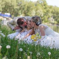 Поцелуй среди одуванчиков :: Ольга Зеленская