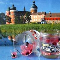 Вода, лёд, ягоды :: Татьяна Смоляниченко