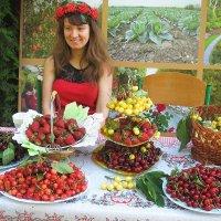Продавец ягод. :: Николай Сидаш