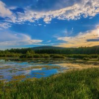 Болотное озеро :: vladimir Bormotov