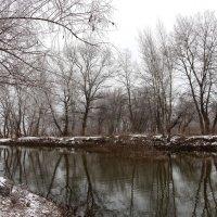 И снова зима :: Dr. Olver ( ОлегЪ )