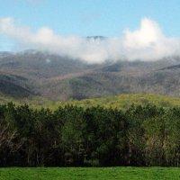 DSC_1343    Утро - Отпуск - Горы ....... :: Aleks Minin