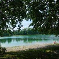 Июнь, июнь…Начало лета, Зелёный праздник для души.... :: Galina Dzubina