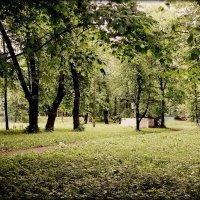 В старом парке. :: Любовь