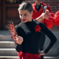 Красное-чёрное :: Андрей Бондаренко