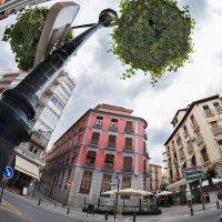 Granada :: Nadin