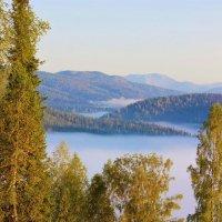 В долине реки туман :: Сергей Чиняев
