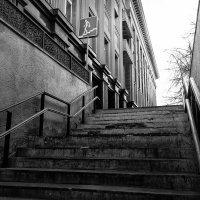 вверх по лестнице :: Александр