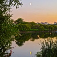 Луна в реке купается :: Елена