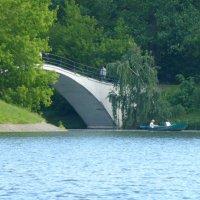 Горбатый мостик :: Татьяна Лобанова