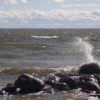 Балтийская волна. :: Татьяна