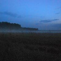 Летний вечер :: sergej-smv