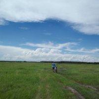 В путь... к облакам... :: Светлана Рябова-Шатунова