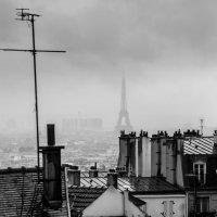 Дождливый Париж :: Наталия Л.