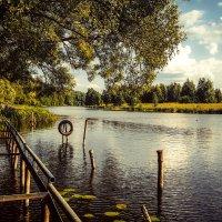 Летний день на реке ................. :: Александр Селезнев